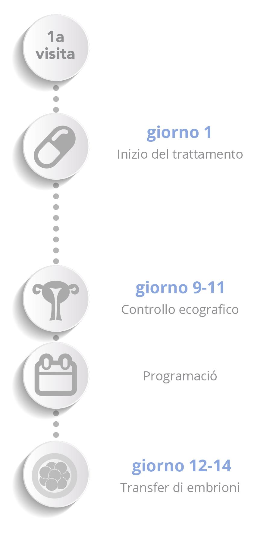 Donazione di embrioni - Schema verticale