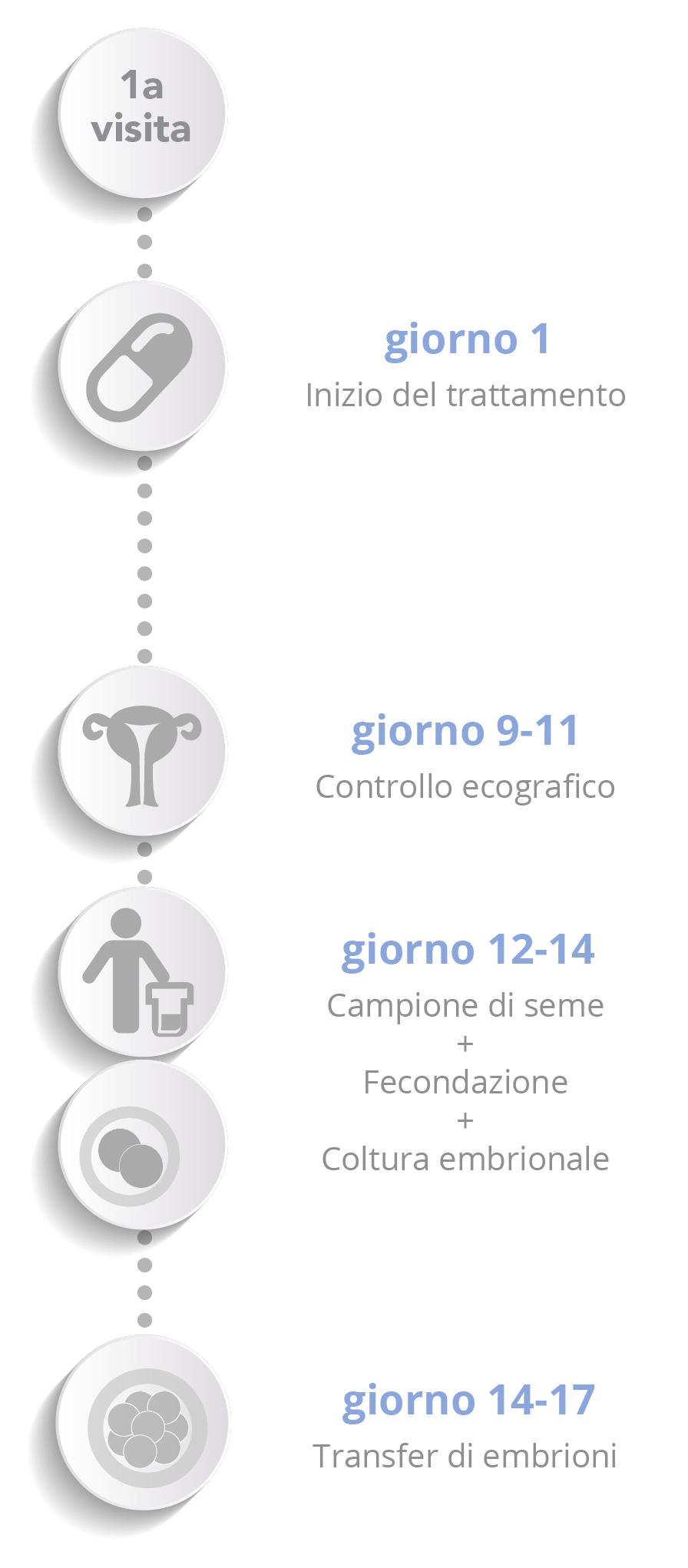 Donazione di ovuli - Schema verticale