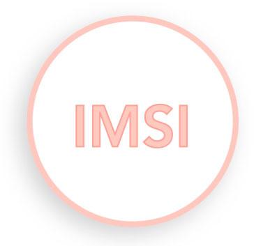IMSI / SUPERICSI